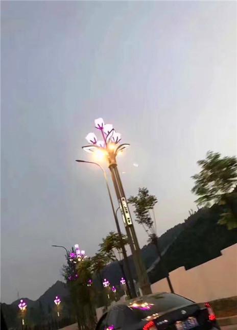 四川花灯施工安装案例图