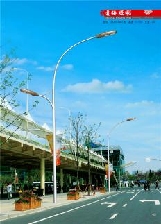 飞利祥照明LD-088 道路照明灯 路灯 照明灯 室外照明灯具 厂家