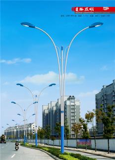 6米LED 道路灯