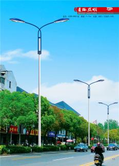专业的生产商!100%质量可靠!城市照明专家!路灯厂家!