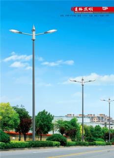 LED市电道路灯