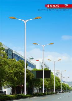 飞利祥14米LED市电路灯杆厂家