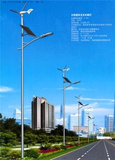 新农村8米风光互补太阳能路灯厂